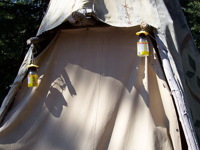 Yellow jacket traps hung by the teepee.