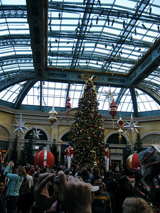 Inside the Bellagio hotel and casino Conservatory, decorated for the holidays.