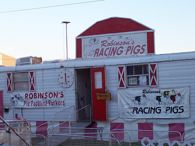 Robinson's Racing Pigs!
