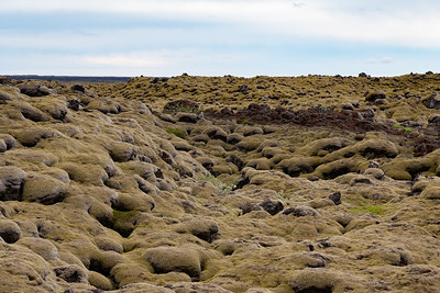 2018, Iceland, on the road to Vik, moss covered rocks