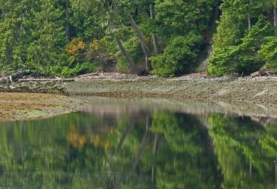 Sooke River Sfumato