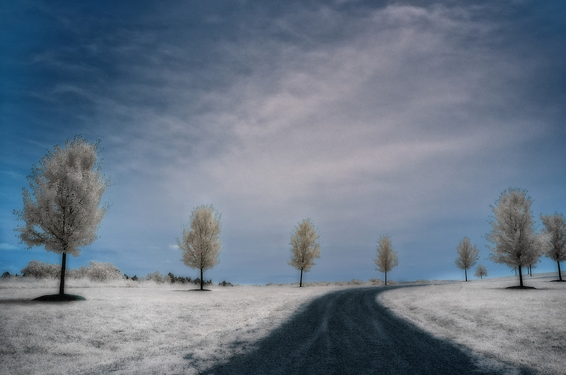 Cold Road January 30, 2010  Captured with an Infrared-converted Nikon D70s.