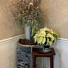 A corner of the kitchen features a lovely display of mixed greens, sticks and lights in a silver vase surrounded by pinecones, a white poinsettia, a piece of art by Rahim Gray.