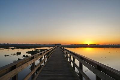 Sunrise Over Cattail Marsh