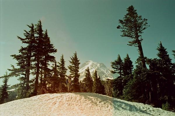 Mt Hood in Svema Colour 125