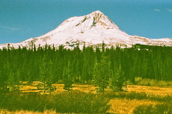Pentax Program Plus - Mt Hood from Elk Meadows