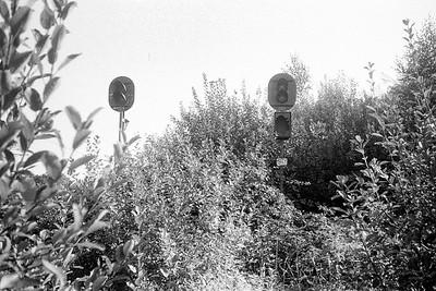 Leica M4_20210331_036