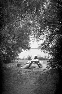 Leica II mini_20190805_001407