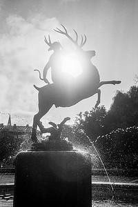 Leica M4_20191018_195648