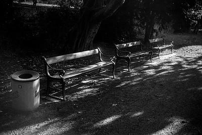 Leica M4_20191018_195649