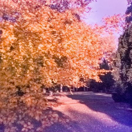 Kodak Instamatic 500_20170120_232038