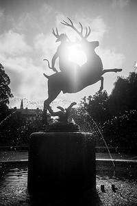 Leica M4_20191018_195700