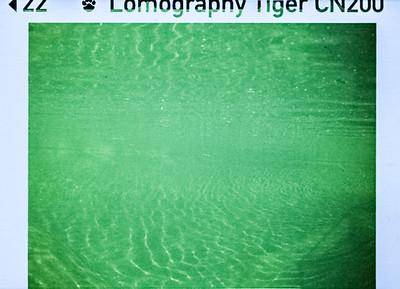 Minolta 110 Zoom SLR_20170417_104021