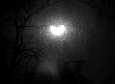 Solformørkelse i 1971