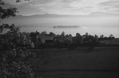 Zürichsee mit Insel Lützelau.