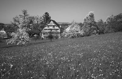 Dändliker-Haus, Hombrechtikon (ZH)
