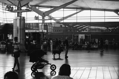 Staten Island Ferry Terminal (SI) - II | Bay Street - Staten Island Lens: Nikkor 50mm f/1.4 Film: Kodak TRI-X iso400