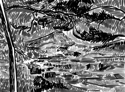 Cezanne_analysis-Mont_Sainte_Victoire_w_Large_Pine