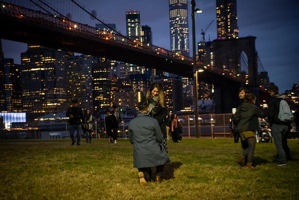 Anas Brooklyn Bridge Proposal