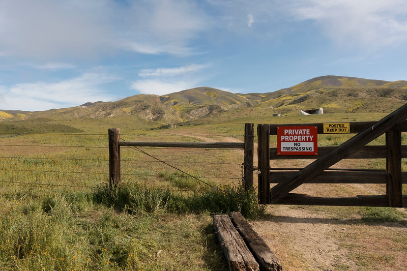 The property owner of the most popular hike in previous years has started locking the gate - the signs are also new!  So we drove a little further down Elkhorn this year to find good access to the hills.