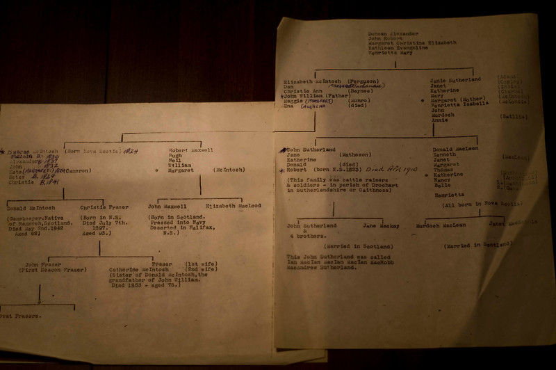 Family tree from Aunt Enas Trunk