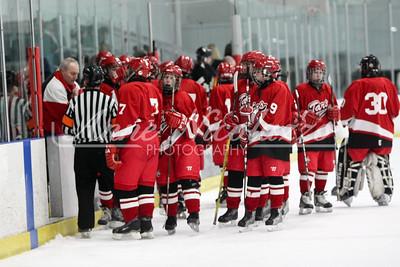 Anchor Bay Hockey Tars 2-12-2010