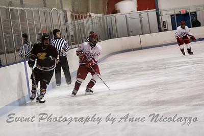 Anchor Bay Tars Hockey Team vs Ford Falcons 2-1-10
