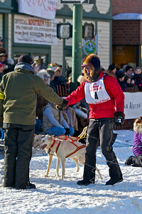 2012 Fur Rondy Sprint Dog Races in Anchorage. This is a world class dog race with competitors from all over the world come to race there dogs. A thanks for helping and good luck.