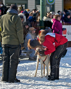 2012 Fur Rondy Sprint Dog Races in Anchorage. This is a world class dog race with competitors from all over the world come to race there dogs. One last kiss for luck.