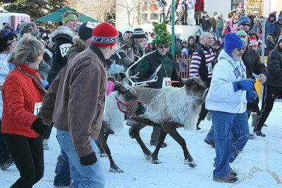 "You have heard of ""Running of the Bulls"" well this is Alaska's answer to that. It is held every year at Fur Rondy. ""Running of the Reindeer"""