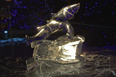 Every year Anchorage has a ice carving contest. fish