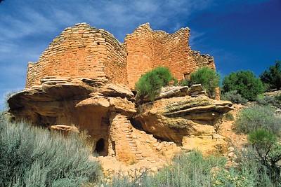 Cutthroat Castle 2