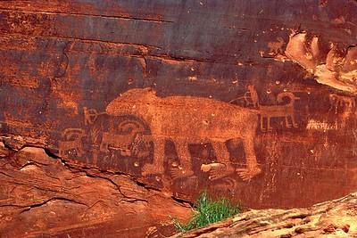 Bear Petroglyph