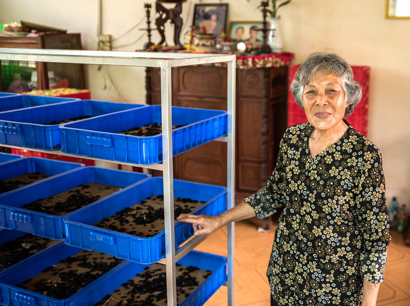 This Vietnamese woman makes a good living selling  mealworms--between 100 and 300 pounds of them a month.
