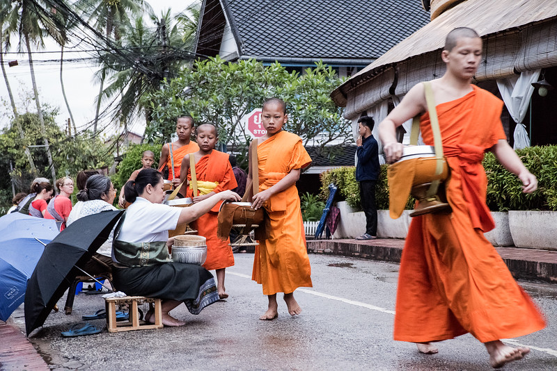 In Luang Prabang, Laos,  local monks go on a daily food alms walk at 6 a.m. to receive rice from residents.