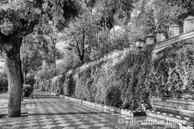 Alhambra garden wall, Grenada, Spain