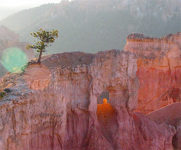 Bryce Canyon, dawn.