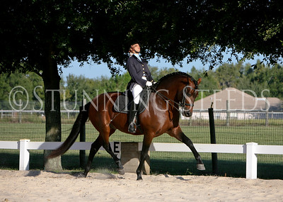Kabileño XV under saddle