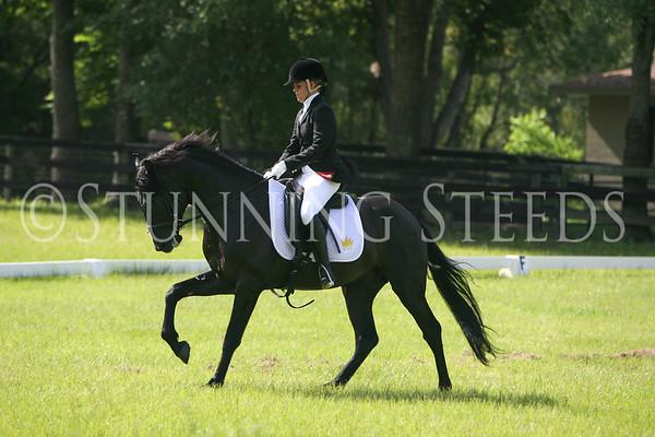 Octavio under saddle