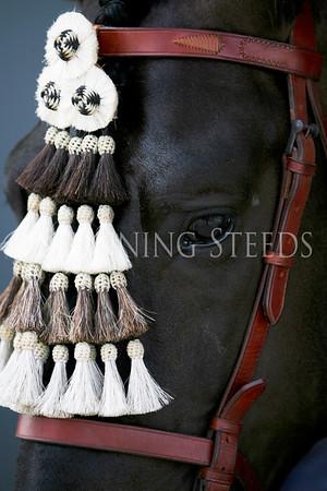 Costalero Native Tack