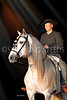 Andalusians - Lusitanos : 137 galleries with 9728 photos