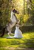 StunningSteedsPhoto-HR-3497