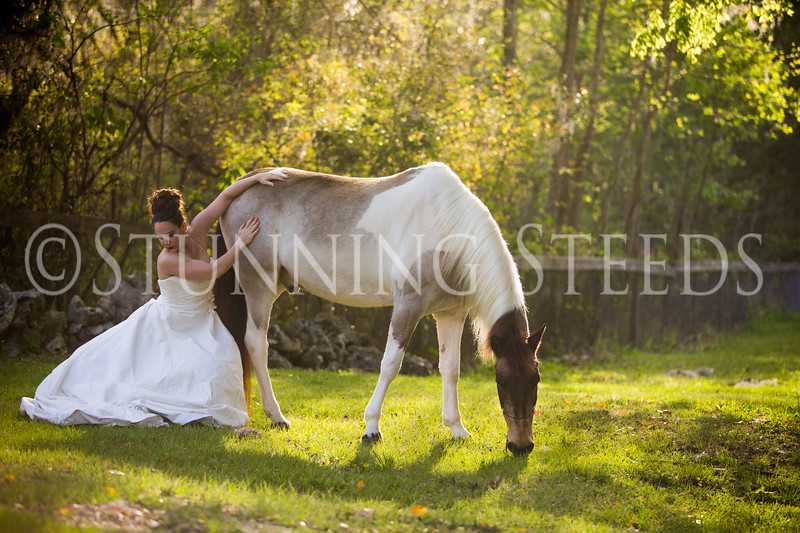 StunningSteedsPhoto-HR-3652