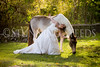 StunningSteedsPhoto-HR-3647