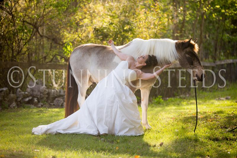 StunningSteedsPhoto-HR-3641