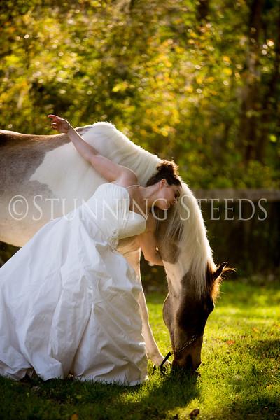 StunningSteedsPhoto-HR-3624