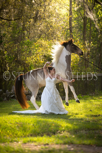 StunningSteedsPhoto-HR-3504