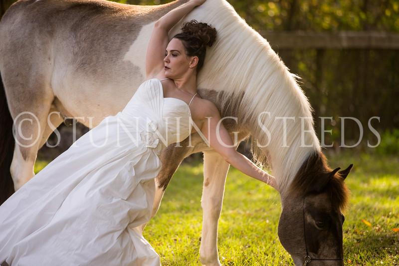 StunningSteedsPhoto-HR-3700