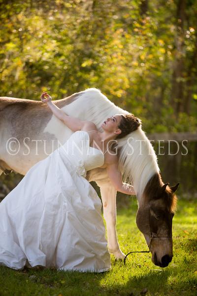 StunningSteedsPhoto-HR-3636