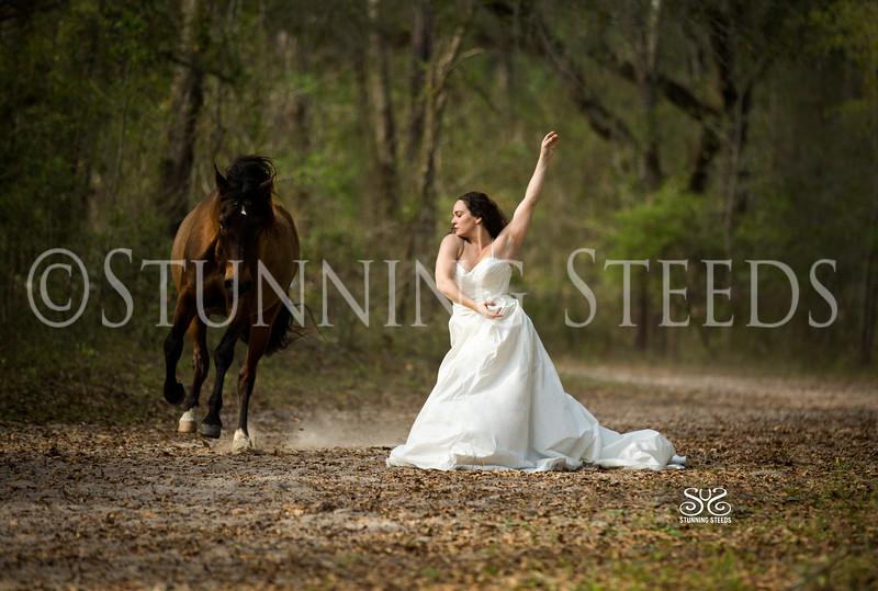 StunningSteedsPhoto-HR-3107tu-Sig